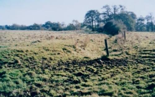 10.1999 Blyth meadow from pond towards Mells