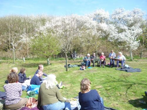 2015 April 22 Uke3A band in the orchard on National 'Sing to the Trees' Day