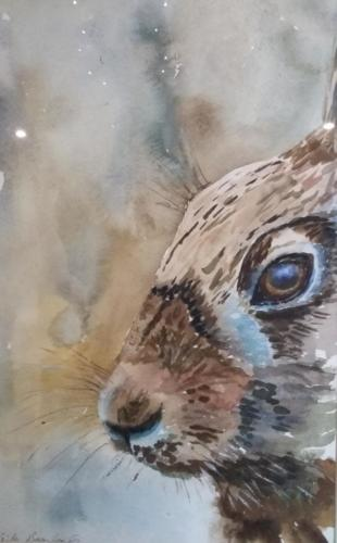 2018 Art Competition over 18s winner  Dynamic Hare by Sheila Beanlands