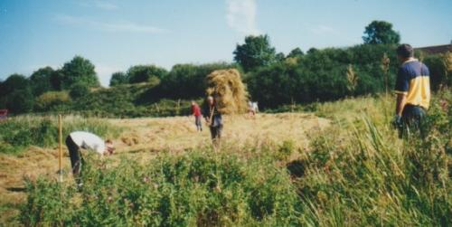 21. 2000 September the first Folly meadow haycut