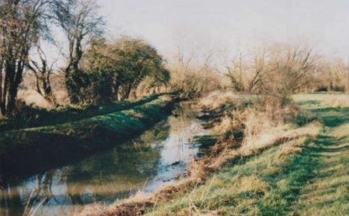 27. 2001 Spring New Reach and Folly meadow recovered