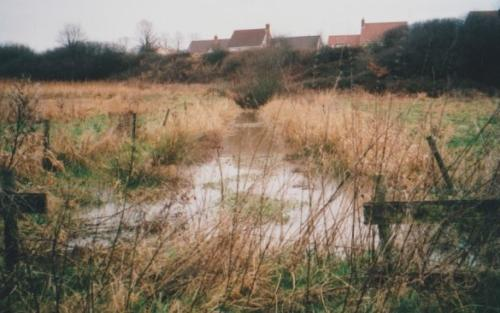 29. 2001 Folly meadow ditch before dredging