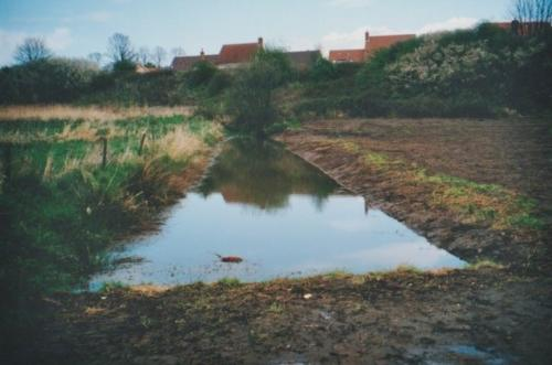 30. 2001 Folly meadow ditch after dredging