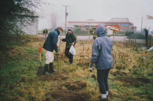 41. 2002 November planting oaks in Lester'sPiece