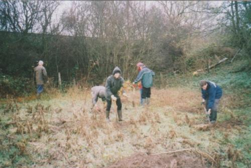 42. 2002 November planting oaks in Lester's Piece