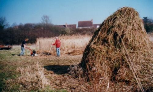 44. 2003 Allen scythe cutting Folly meadow to improve the herb-rich grassland