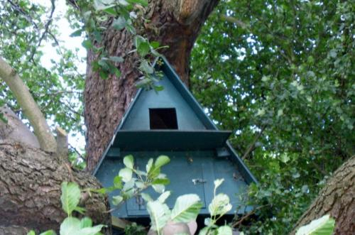 58. Barn owl box