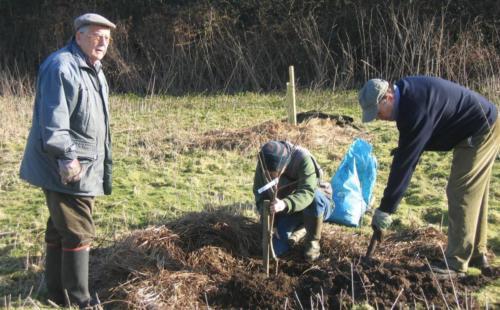 66. 2008 February planting Arthur's Wood