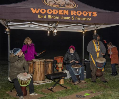 Wooden Roots Band